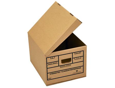 Record storage box